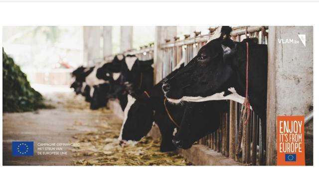 Duurzame toekomst voor de melkveehouderij