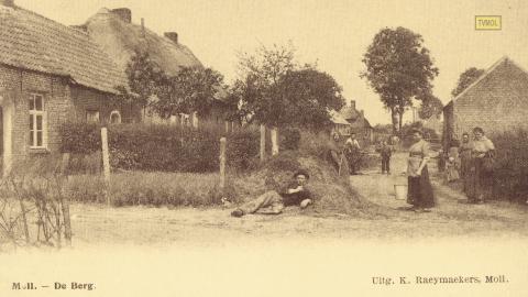 Moll - De Berg