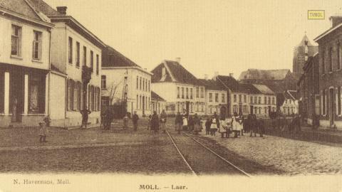 Moll - Laer