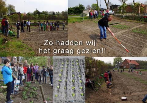 Kindertuin Mol Achterbos 2016