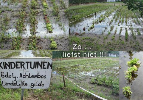 Kindertuin Mol Achterbos 2016 last van regen